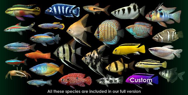 Dream aquarium screen saver virtual aquarium active desktop - Dream aquarium virtual fishtank 1 ...